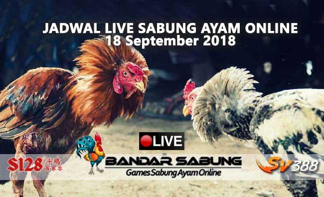 jadwal sabung ayam online s128 dan sv388 18 september 2018