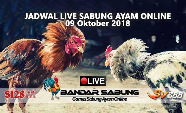 jadwal sabung ayam online s128 dan sv388 09 oktober 2018