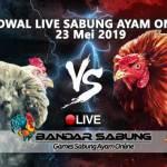 Jadwal Sabung Ayam Online S128 Dan SV388 23 Mei 2019