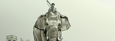 elefante07