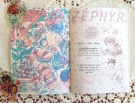 zephyr_1