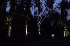 Rear garden, wooden cube lights