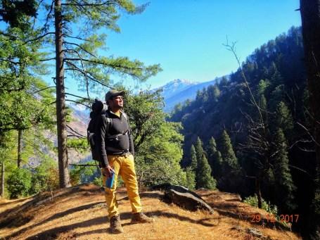 Praveen Deshmukh among pine Trees