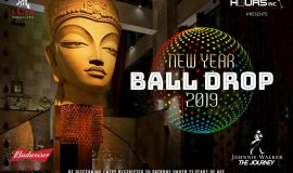 New Year Ball Drop