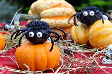12. Halloween Cake Pop Spiders
