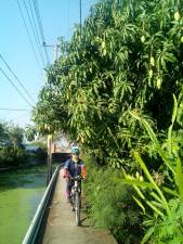 10-canal-cycling-trip-9