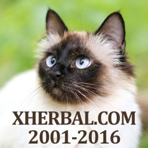 Xherbal.com