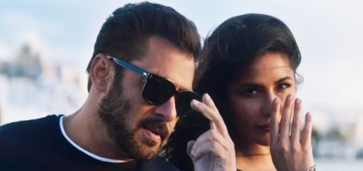 Swag Se Karenge Sabka Swagat Lyrics Song - Tiger Zinda Hai