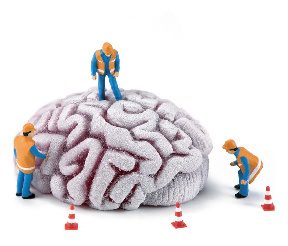 Brain 01
