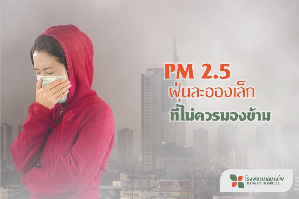 PM 2.5 ฝุ่นละอองเล็ก ที่ไม่ควรมองข้าม