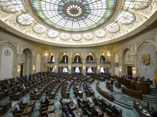 Legea darii in plata a fost adoptata pe articole si va intra la votul final, la ora 13.00