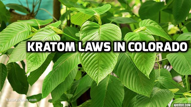 Kratom Laws in Colorado