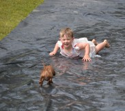 banksia-park-puppies-slip-and-slide-3
