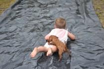 banksia-park-puppies-slip-and-slide-8