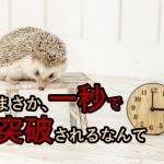 harinezumi_tokei