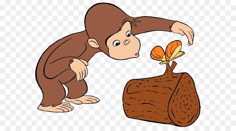 Curious George Neugier Cartoon Clip Art Geburtstag Cliparts Neugierig Png Herunterladen 647 492 Kostenlos Transparent Menschliches Verhalten Png Herunterladen