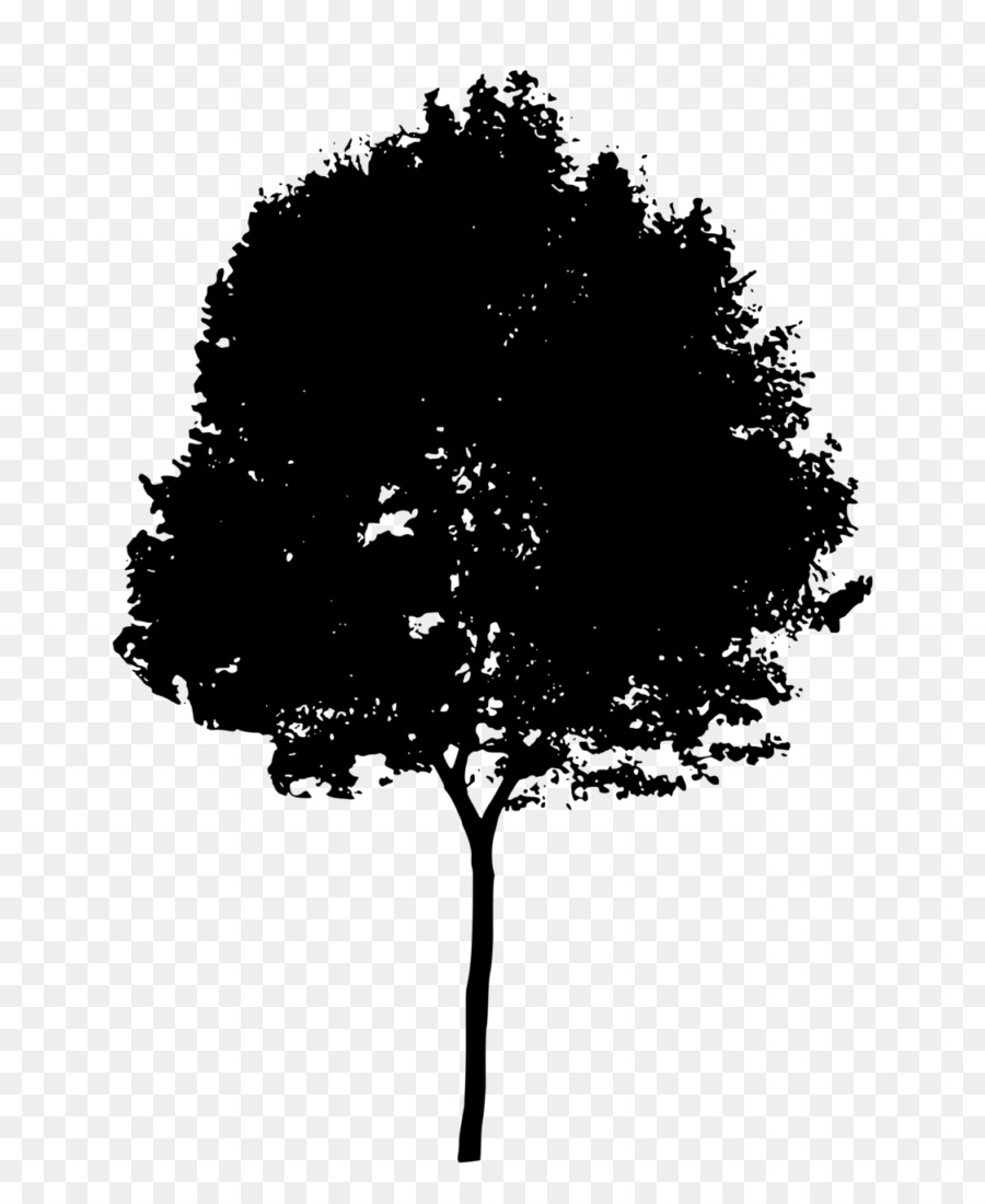 Tree Branch Silhouette Png Download 768 1081 Free Transparent Silhouette Png Download Cleanpng Kisspng