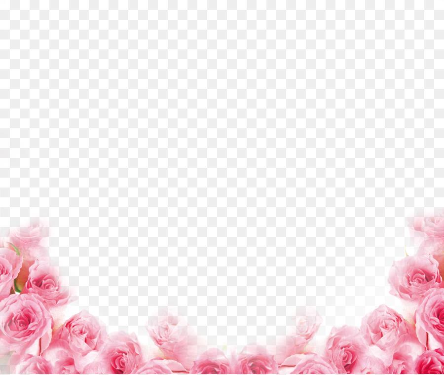 Pink Beach Rose Petal Flower Pink Rose Border Png
