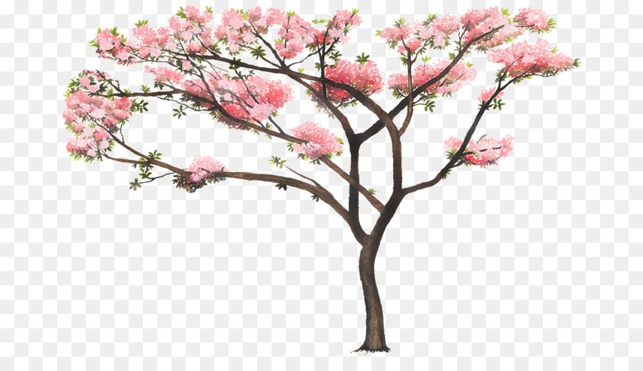 Tabebuia Rosea Tree Nature Woody Plant Arboles Png