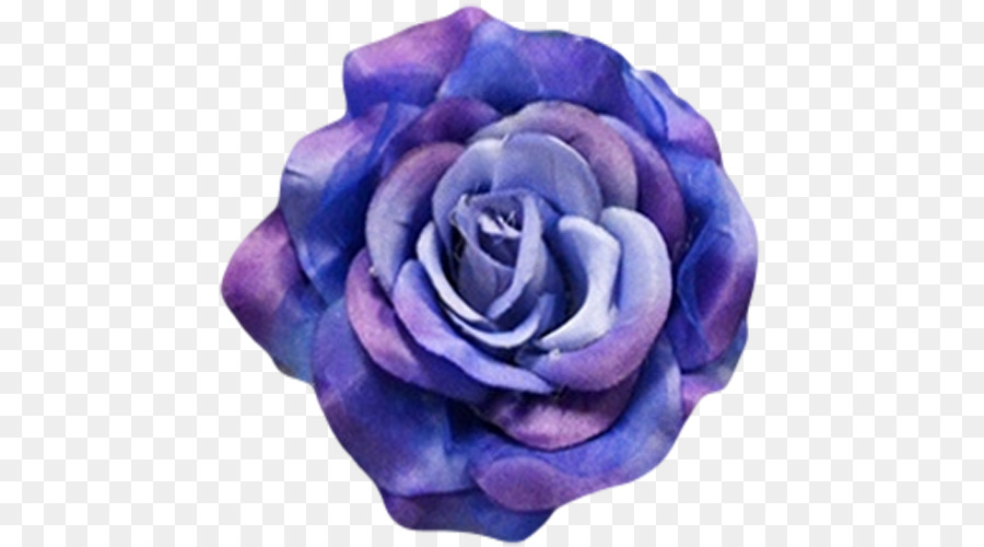 Blue rose Cobalt blue Flower   burgundy flowers png download   500     Blue rose Cobalt blue Flower   burgundy flowers