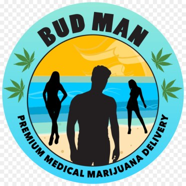 Image result for free blog pics of Marijuana on the beach