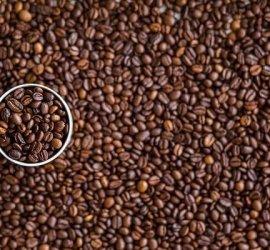 cà phê hạt cần độ ẩm bao nhiêu