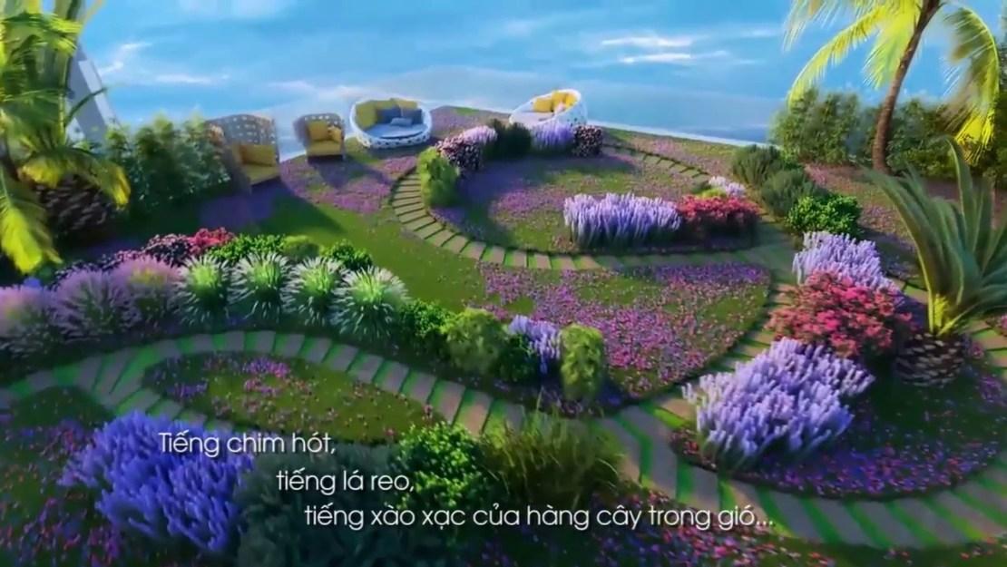 Hương hoa Lavender ngay tại khu vườn nhỏ
