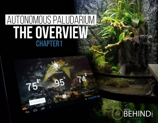 BEHINDtheBUILD paludarium overview chapter 1