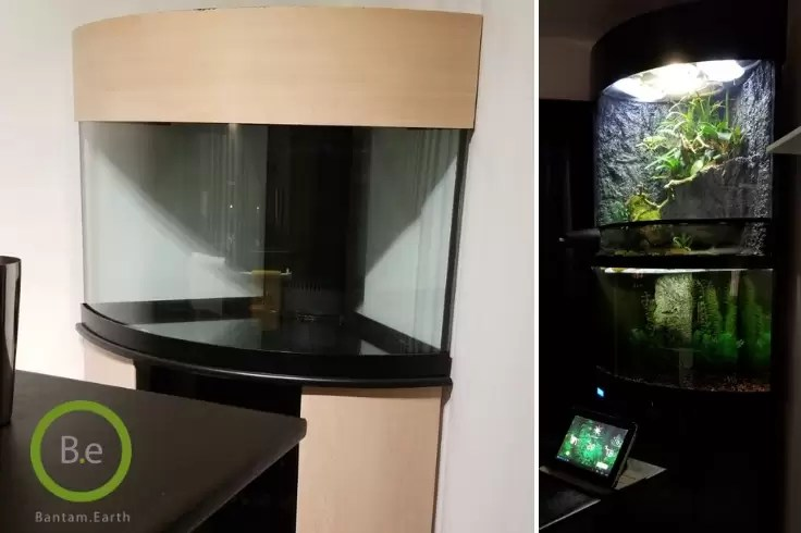 before and after paludarium build