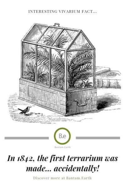 a sketch of the worlds first terrarium