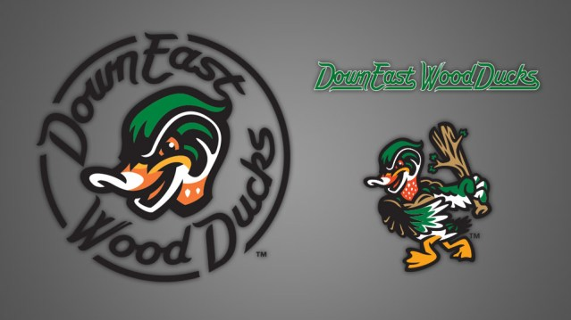 wood ducks.jpg