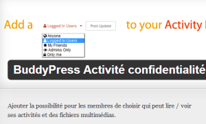 Buddypress activity privee
