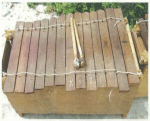 Mendzang me Biang: instrument de musique traditionnelle du Gabon