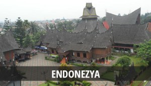 ENDONEZYA