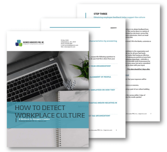How to Detect Workplace Culture Workbook | BA PRO, Inc.
