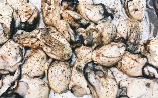 燻製日記~鹿児島県産の牡蠣のスモーク~パスタ・アヒージョ・グラタンに使います