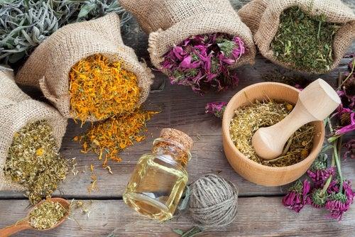 الأعشاب العطرية تسمح لنا بالحصول على المزيد من حمض الهيالورونيك في الأدمة