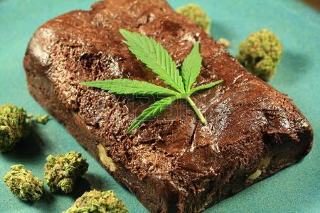 Decomisan 12 pacas de marihuana