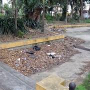 Continúa el descuido de la Plaza Valerio