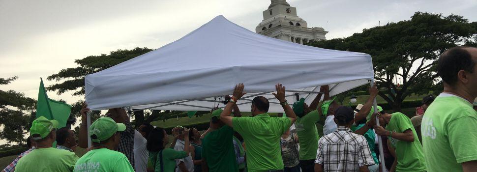 Marcha Verde reinstala carpa área monumental