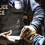 Dominicano a justicia por violación tránsito