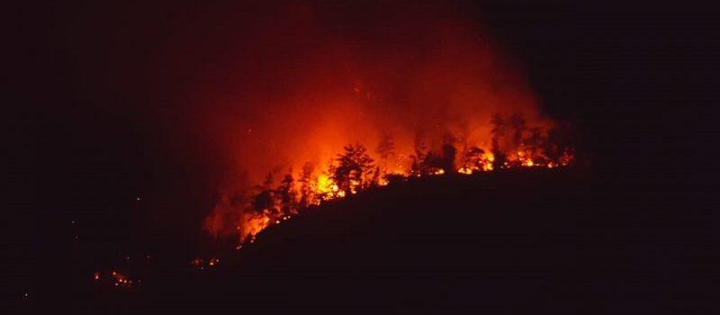 Fuego forestal afecta zona de La Sierra