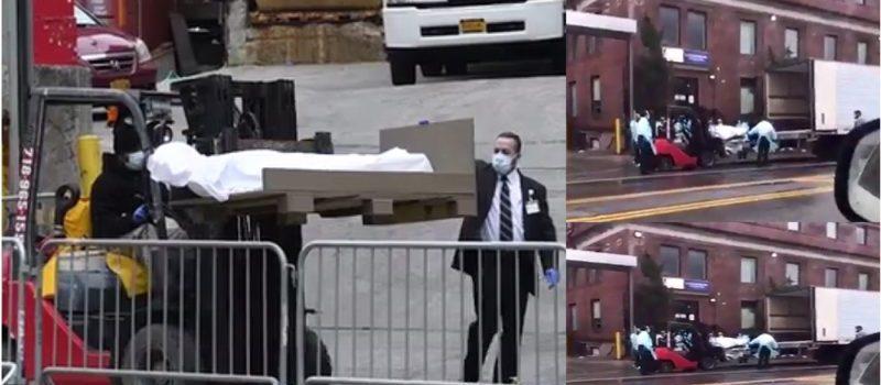 En NY mueven cadáveres con palas mecánicas