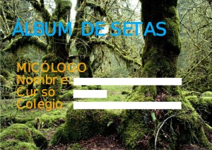 albumsetas (copia)