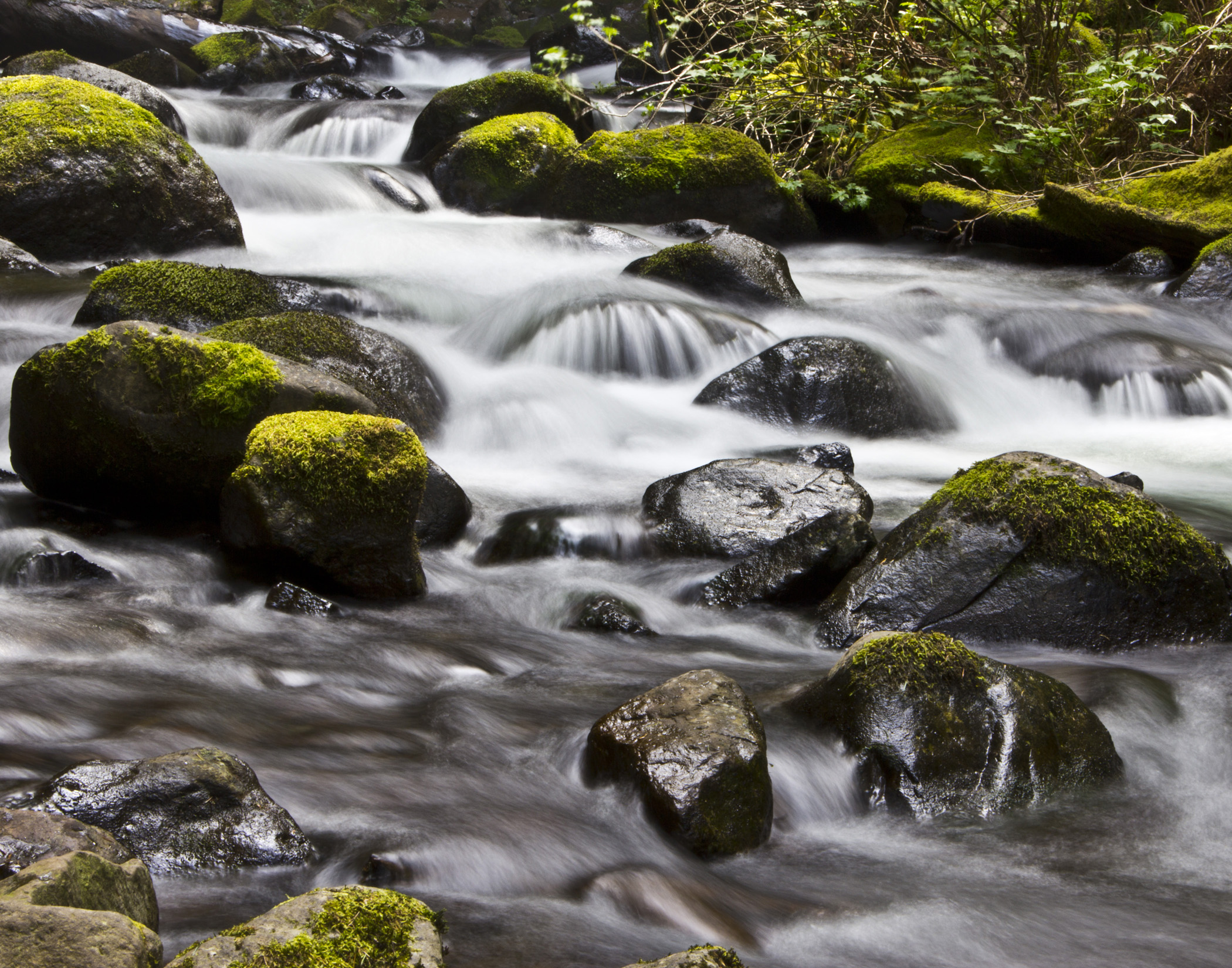 Water from waterfall flowing over mossy rocks at Horsetail Falls on Columbia River Gorge Oregon