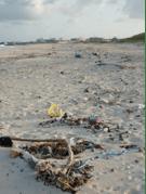 Barbados Beaches 2b