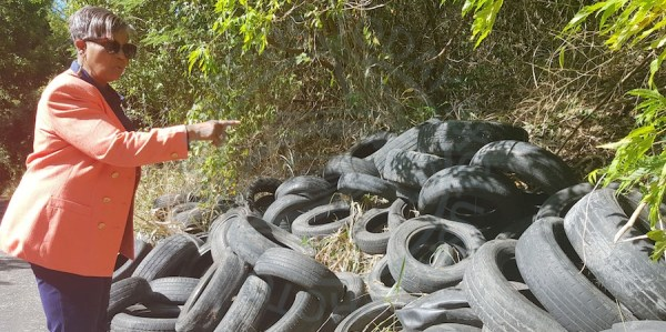 Member of Parliament for St Thomas Cynthia Forde pointing at the tyres dumped alongside the road at Bucks.