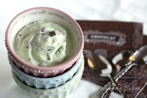 Mint-Chocolate-Chip-Ice-Cream