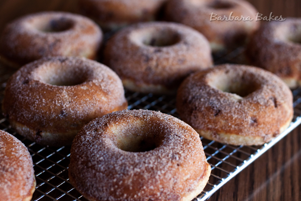 Banana-Cinnamon-Chip-Donuts-2-Barbara-Bakes