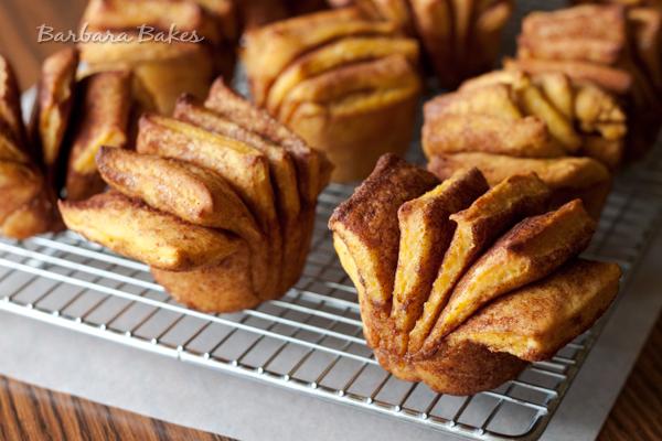 Pumpkin Fantail Cinnamon Rolls with Maple Cream Cheese Icing